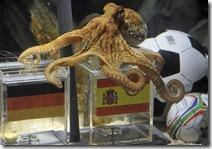 Octopus-Paul